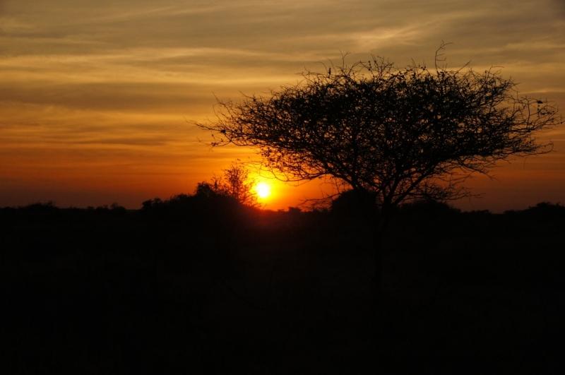 2016-Südafrika-01 - 14235833782014-08-20_Sonnenuntergang.jpg