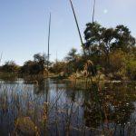 2016-Südafrika-01 - 14235845842014-08-24_Okavango2.jpg