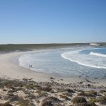 2016-Südafrika-01 - 14260232579Namaqua_Bucht.jpg