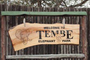Tembe